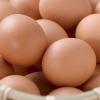 卵は物価の優等生。卵が安く売られる理由。安いものには安い理由がある。